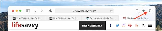 如何在 Mac 上的 Safari 中搜索打开的标签