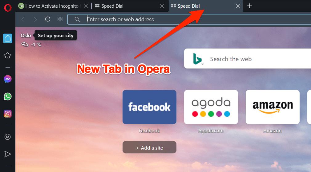 如何在 Opera 浏览器上打开私人窗口和新标签页?