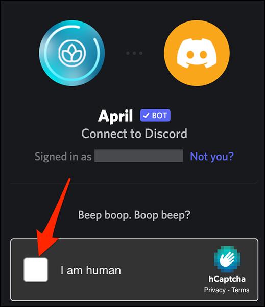如何将机器人添加到 Discord