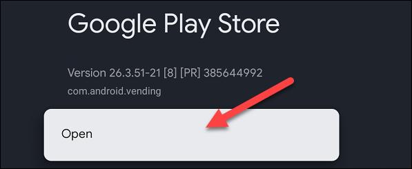 如何在 Google TV 上打开完整的 Play 商店