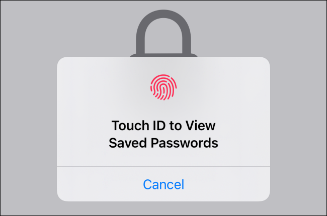 如何在 iPhone 和 iPad 上使用内置的两因素身份验证器