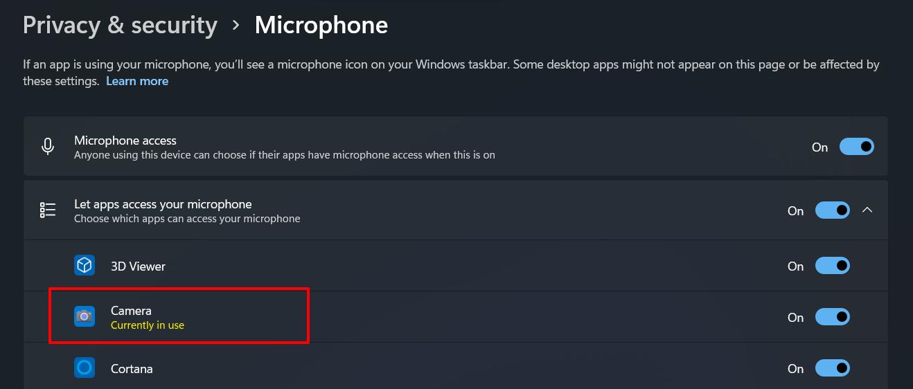 如何在 Windows 11 中检查哪个应用程序正在使用相机/位置/麦克风?