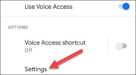 查看 Android 手机时如何激活语音访问