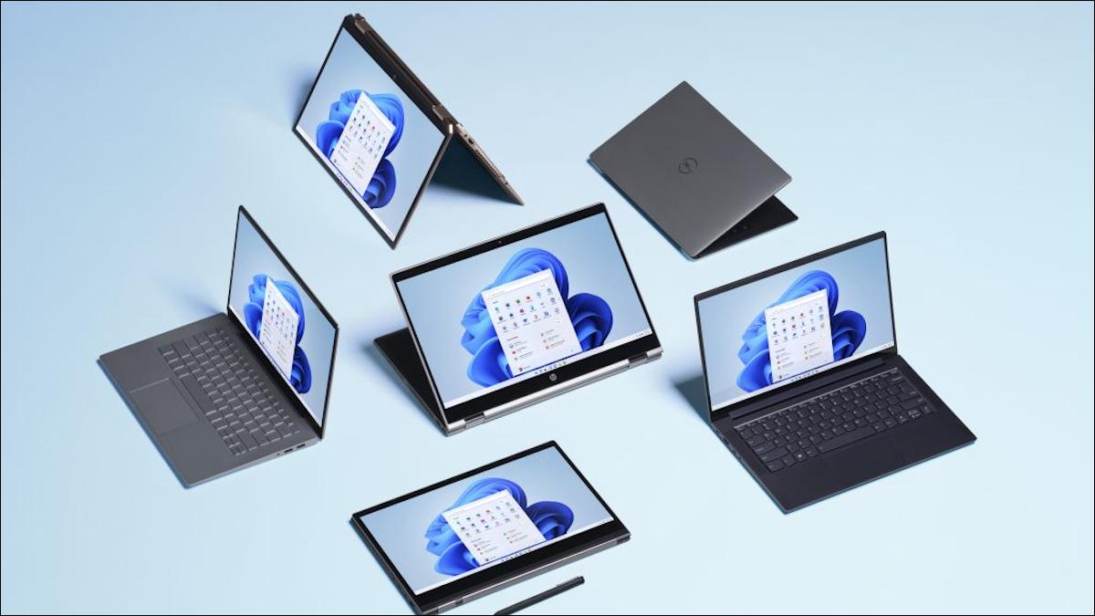 Windows 11 的本地网络文件传输速度越来越快